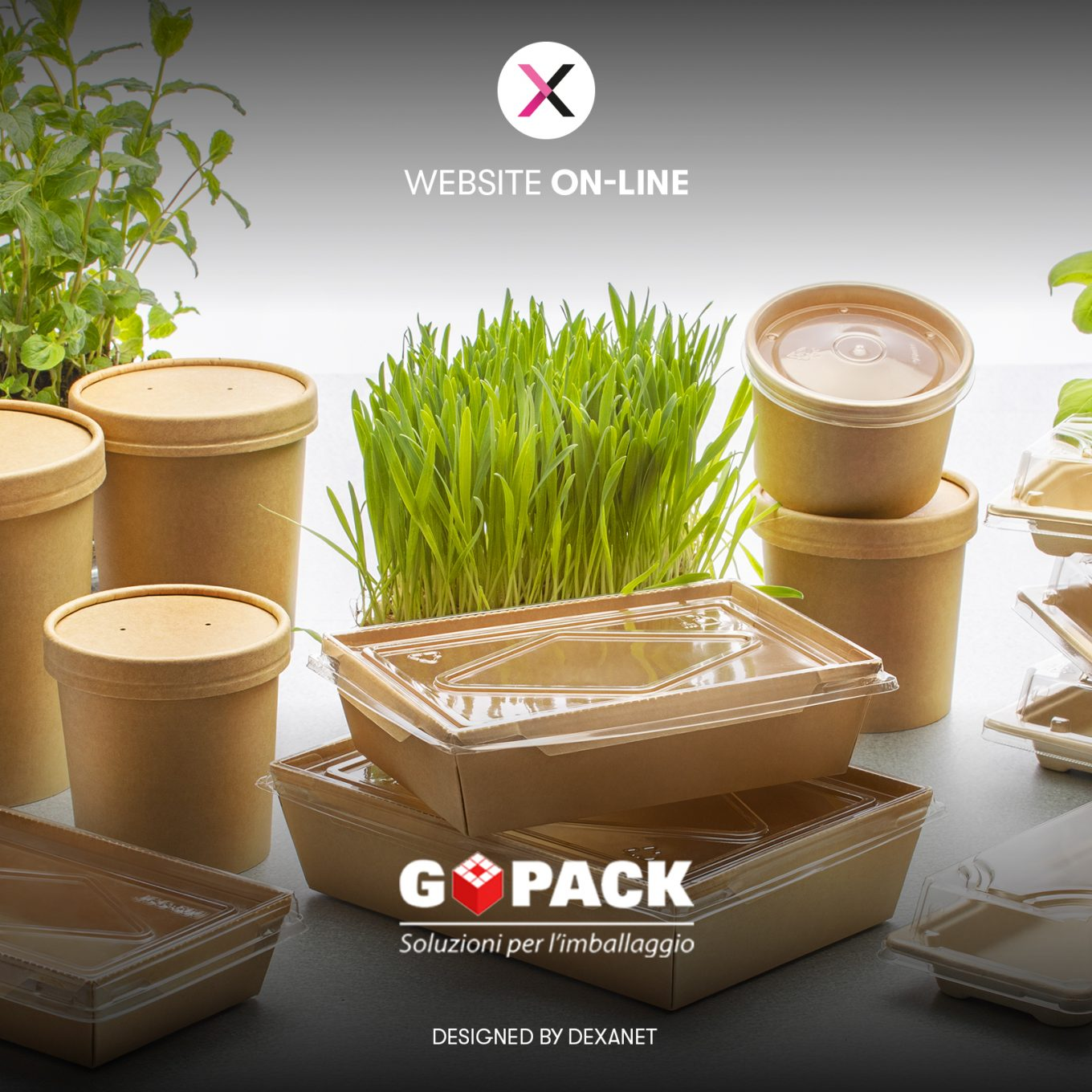 Restyling sito web GoPack