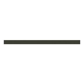 Dexanet per Roberto Ricetti